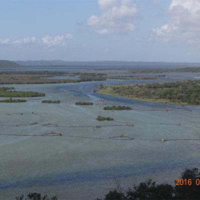 Fish traps on Kosi estuary