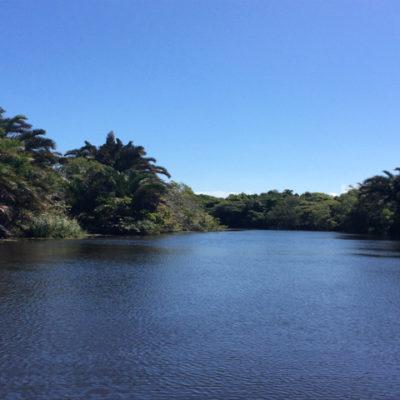 Malangeni River close to Lake Amanzamyama