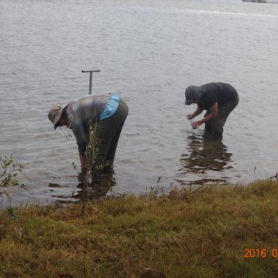 Water quality sampling in Lake Sibaya